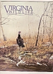 Click here to enlarge image and see more about item J4462K: Virginia Wildlife -  December 1985
