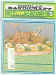 Popular Handicraft hobbies Spring  1970
