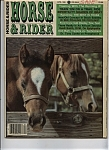 Click here to enlarge image and see more about item J7784: Horse& Rider - April 1986