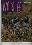Click here to enlarge image and see more about item J8261: National Wildlife - December/January 1996