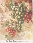 JEAN SADLER~GRAPES~STUDY 26~OOP~1962