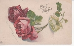 Click here to enlarge image and see more about item KLEIN04: VINTAGE~ROSES~CATHERINE KLEIN~1917