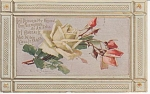 Click here to enlarge image and see more about item KLEIN06: C.KLEIN~VINTAGE~ROSES~POST CARD~1910