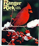 Click here to enlarge image and see more about item M1981: Ranger Rick's nature magazine - December 1973