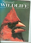 National Wildlife   December-January 1973