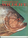 International wildlife -  May - June 1973