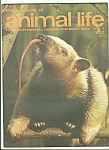 encyclopedia of animal life - Part 3    1974??