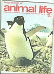 Encyclopedia of animal life - Part 1   1974???