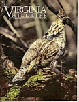 Virginia wildlife - Octob er 1986