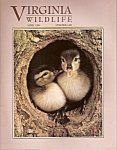 Virginia wildlife = April 1996