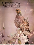 Virginia Wildlife - March 1986