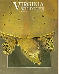 Virginia Wildlife - June 2000