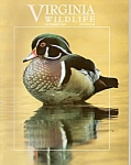 Virginia wildlife - september 2000