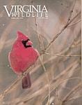 Virginia Wildlife - February 1989
