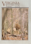 Virginia Wildlife -December 1993