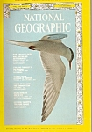 National Geographic magazine- August 1973