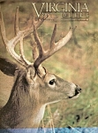 Virginia Wildlife -  November 1983