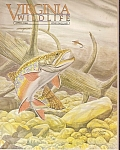 Virginia Wildlife -  April 1985