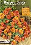 Burpee';s catalog -  1970