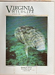 Virginia Wildlife - January 1994