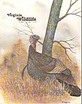 Virginia Wildlife magazine-  March 1982