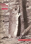 Virginia Wildlife -  March 1956