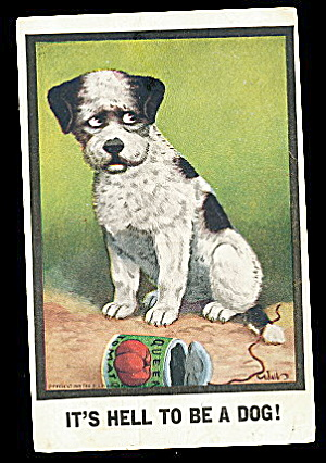 1911 C Bernardt Walls 'Its Hell to be a Dog' Postcard (Image1)