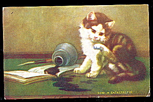 """a Catastrophe"" Cat With Book 1910 Postcard"