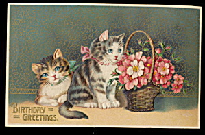 1908 Birthday Cats /Kittens with Flowers Postcard (Image1)
