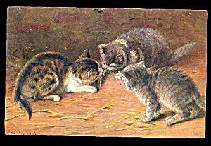 1911 M Stocks Tabby Kittens/cats Postcard