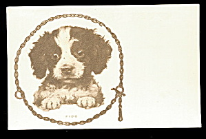 Great FIDO Puppy/Dog Portrait  Vintage Postcard (Image1)