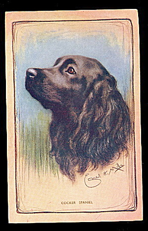 Vintage A S Mills Cocker Spaniel Dog Postcard