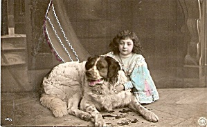 Great 1907 Saint Bernard Dog Artist Postcard (Image1)