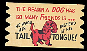 Vintage Wooden 'The Reason a DOG....' Comic Postcard (Image1)