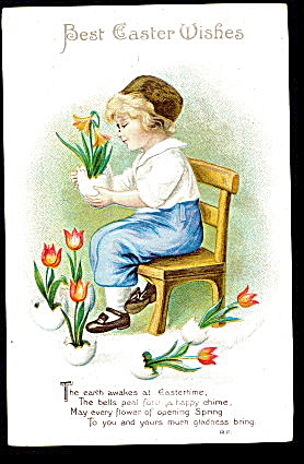 Ellen Clapsaddle Dutch Boy With Plant 1907 Postcard