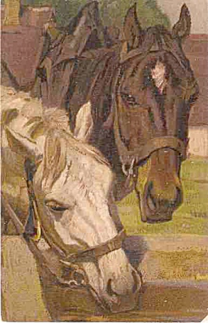 Two Horses - Brown & White Artist 1909 Postcard (Image1)