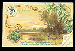October Birthdate Flower Tucks 1907 Postcard