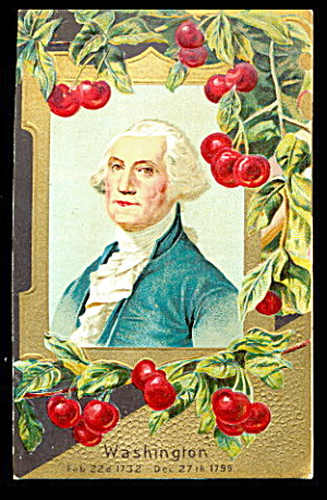 George Washington Patriotic With Cherries 1907 Postcard