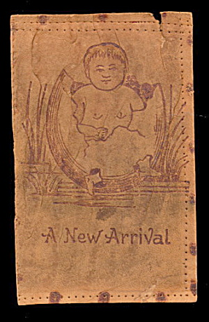 1906 Leather 'A New Arrival' Baby Hatching Postcard (Image1)