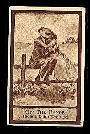 1910 'On the Fence' Lou Mayer Artist Postcard - Lovely (Image1)