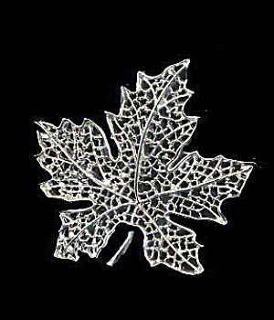 1960s Sarah Coventry 'Silvery Frost' Brooch (Image1)