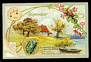 September Birth Date Flower Tucks 1908 Postcard