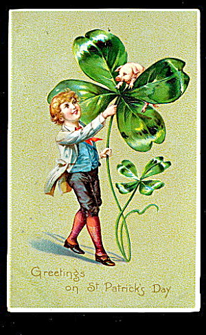 Tucks St. Patricks Day Lad With Clover 1906 Postcard