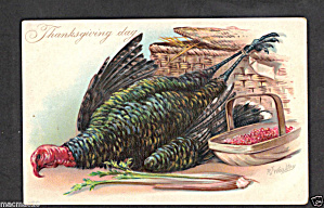 Tucks Thanksgiving Wealthy Turkey 1907 Postcard (Image1)