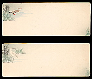2 1880s Long Bird Greetings Cards - Must See