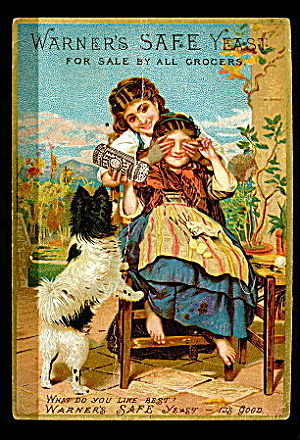 Warner's Safe Yeast 1884 Girls w Dog Trade Card (Image1)
