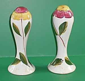Blue Ridge Salt &Pepper Shakers (Image1)