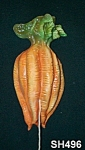 Click to view larger image of Carrots String Holder (Image1)