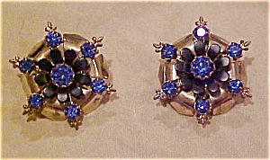 Blue rhinestone earrings (Image1)