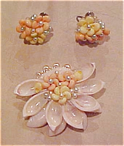 Seashell and Plastic pin & earrings (Image1)